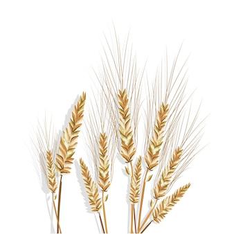 小麦の枝のデザイン