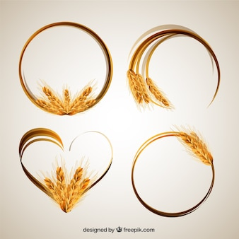 Wheat ear frames