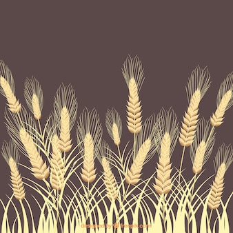 Wheat ears background
