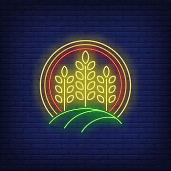 Wheat ears in circle neon sign.