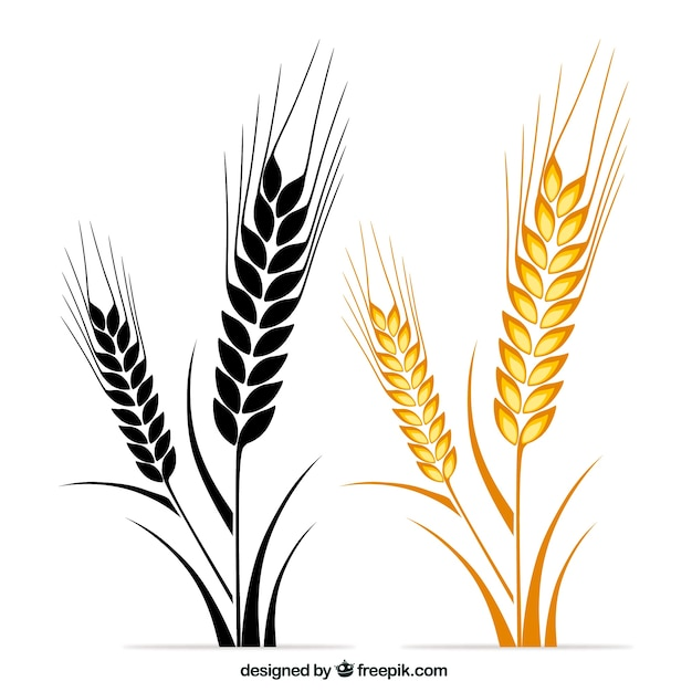 wheat vectors photos and psd files free download rh freepik com wheat vector logo wheat vector ai
