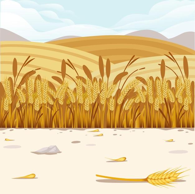 Иллюстрация поля пшеницы с сельским пейзажем и хорошим солнечным днем на фоне горизонтального дизайна баннера.