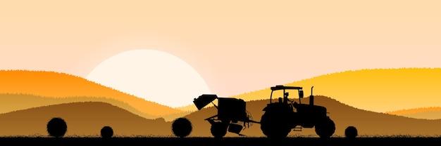 日の出の朝の麦畑