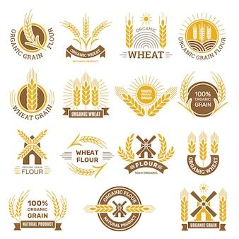 小麦粒のロゴ。小麦の伝統的な製品を収穫する朝食店のための小麦粉農産物