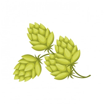 Wheat leaves and pinecone isolated icon