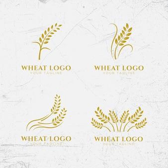 Шаблон дизайна логотипа пшеницы