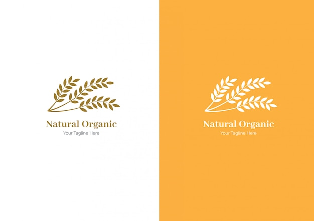 Wheat logo or set collection wheat paddy logo