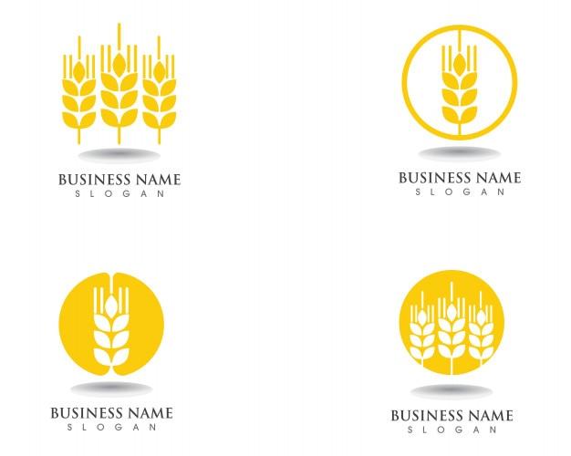 Wheat logo and symbols template vector icon design