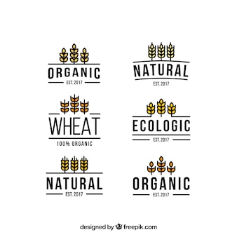 Wheat logos collection in flat style