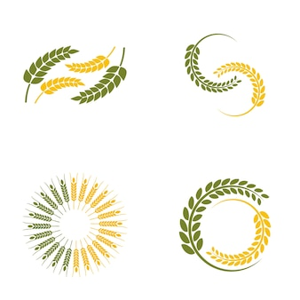 Wheat paddy logo