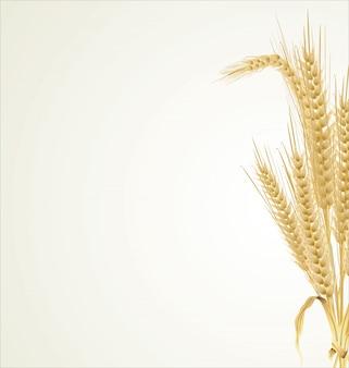 Wheat retro background