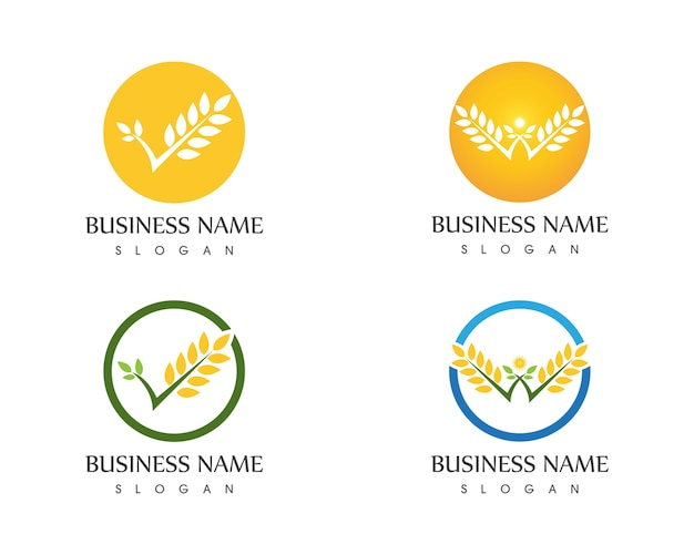 Wheat rice icon logo vector illustration
