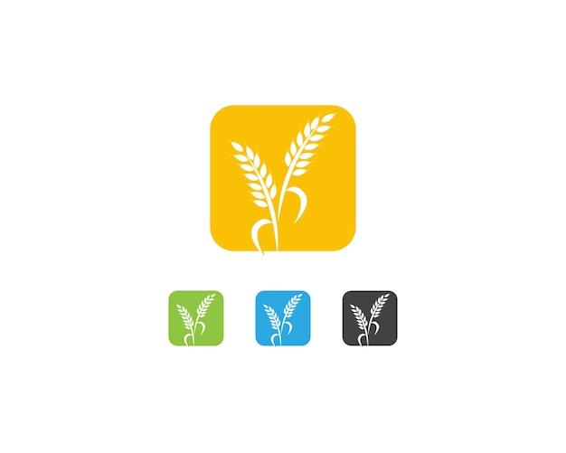 Wheat rice logo template