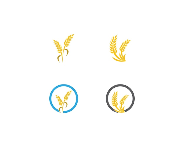 Wheat rice logo template