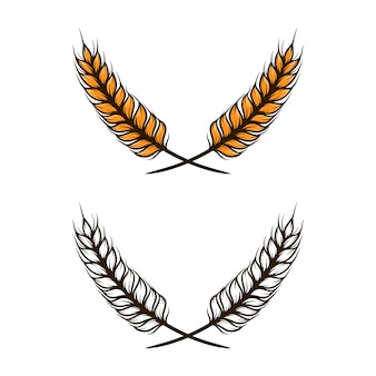 Wheat vector illustration
