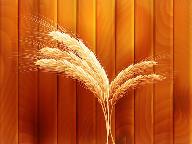 Wheat on wooden autumn background.