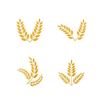 Wheat yellow logo icon