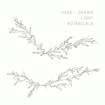 Whimsical hand drawn branches for wedding designs