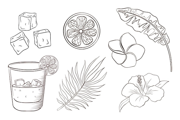 Whiskey and soda cocktail, tropical flowers and leaves coloring page. exotic plants and blossoms set. banana, and palm leaves, lemon slice, ice cubes, hibiscus and plumeria flowers. premium vector