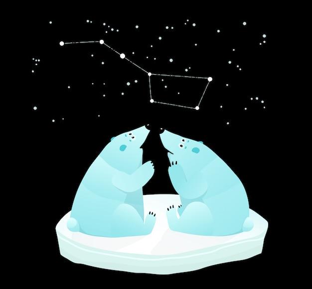 偉大なクマの星座を探している白いクマ