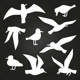 White birds silhuette on chalkboard - flying seagulls silhouettes