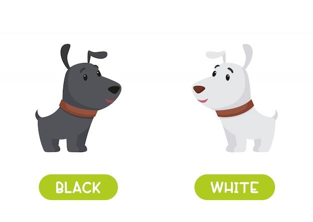 White and black dog. illustration of opposites black and white.