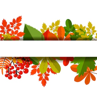 White blank on autumn background with maple leaves vector. nature season color orange autumn background maple leaves. beautiful texture colorful forest autumn background vibrant environment concept.
