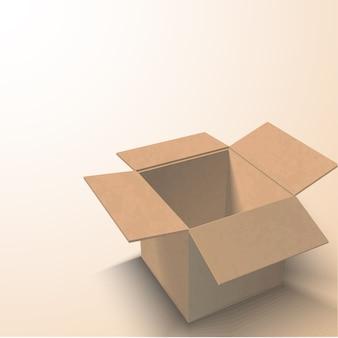 Картонная упаковка с белой коробкой