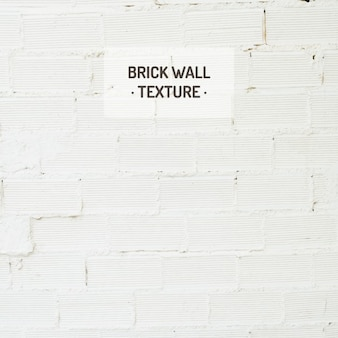 White brick wall texture Free Vector