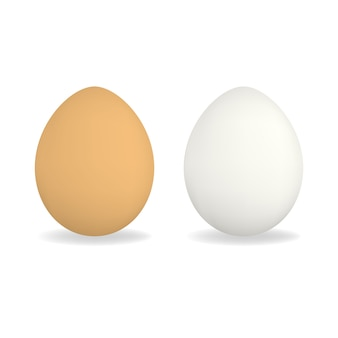 White and brown realistic chicken eggs
