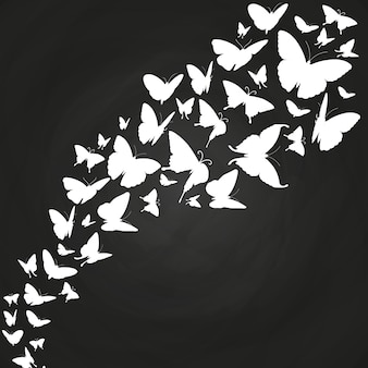White butterflies silhouettes on chalkboard
