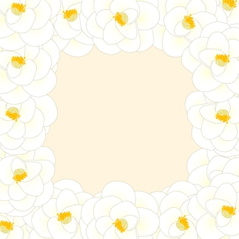 White camellia flower border