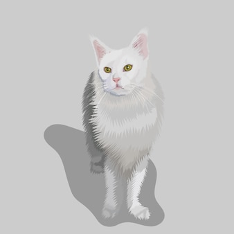 White cat portrait hand drawn illustrations and vector