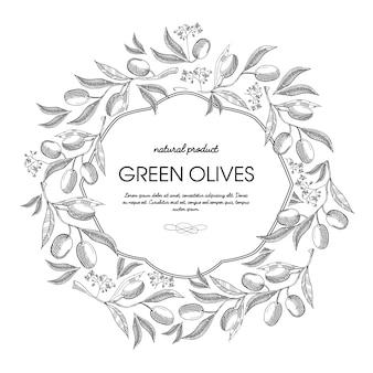 オリーブの房、茎、エレガントな波線の手描きスケッチイラストと白い色のフィリグリーフレーム