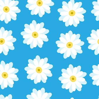 White daisies on a blue background