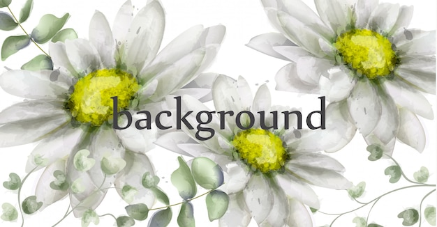 White daisy flowers background watercolor