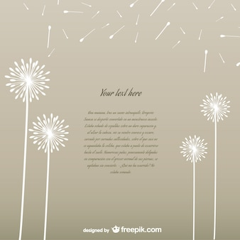 White dandelions background
