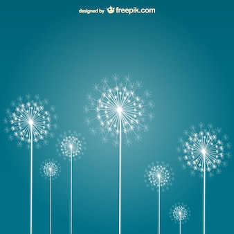 White dandelions vector
