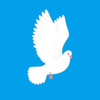 白の鳩。空の無料の鳥。