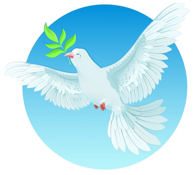 White dove holding green twig, international peace day concept