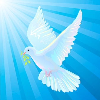 dove vectors photos and psd files free download