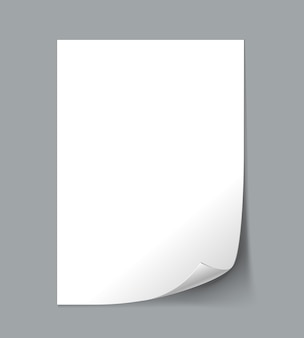 White empty paper sheet with curl