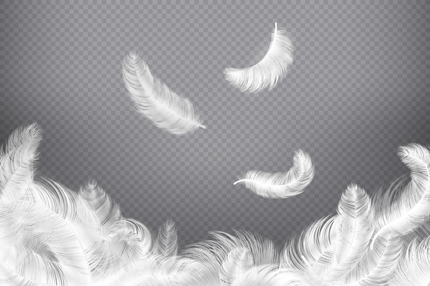 白い羽。クローズアップ鳥または天使の羽。落下する無重力プルーム。夢のイラスト