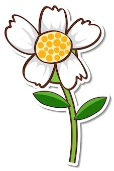Un adesivo con un fiore di erba bianca