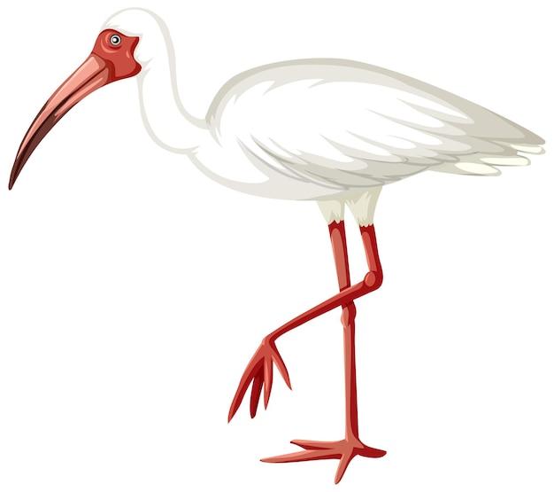 Ibis bianco in stile cartone animato su sfondo bianco
