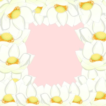 White indian lotus border