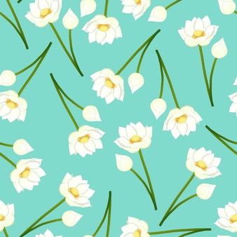 White indian lotus on green mint background