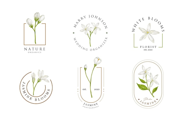 Белый жасмин цветок дизайн логотипа шаблон