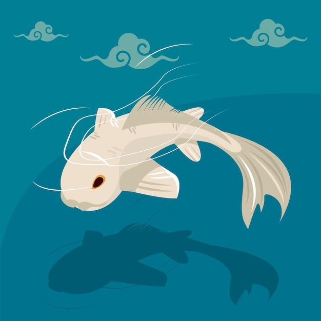 White koi fish swiming