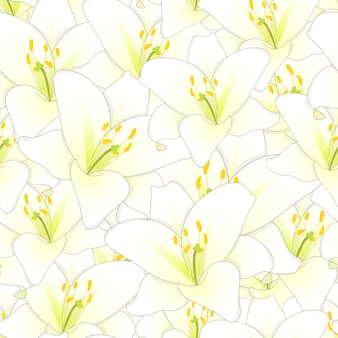 白い白い花のシームレスな背景
